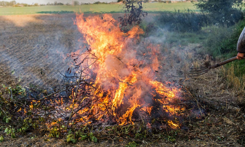 Notice: Burning Debris in Site C Project Areas