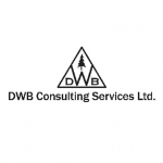 DWB Consulting Services